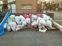 11月のゴミ回収の成果