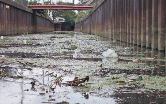 綾瀬川支流出羽堀の現状 わずか3週間でゴミ散乱