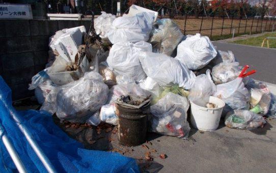 11月のゴミ回収量、48袋分