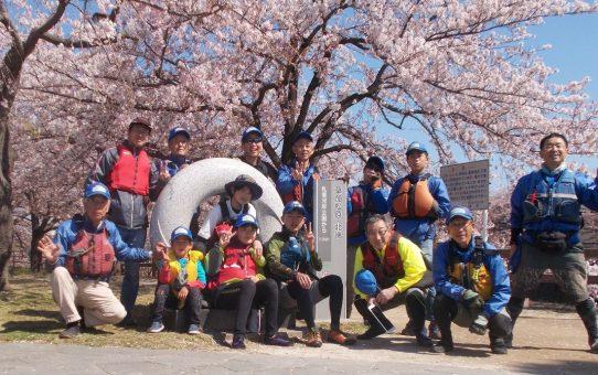 名ごり桜で、14名が5袋回収