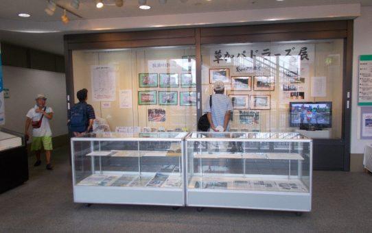 「草加パドラーズ展」 中央図書館、好評開催中