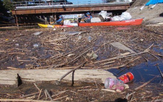 定例活動日 14名で浮遊ゴミ23袋回収