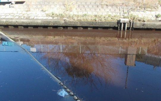 「戸田の川を考える会」と交流