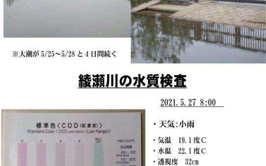 綾瀬川クリーン大作戦 水位と水質(2)