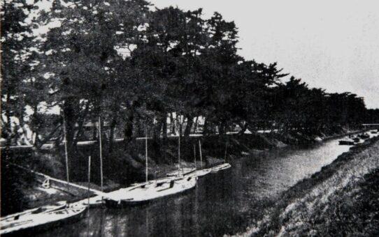 「左岸船着場」の歴史 「綾瀬川マリーナ」の誕生