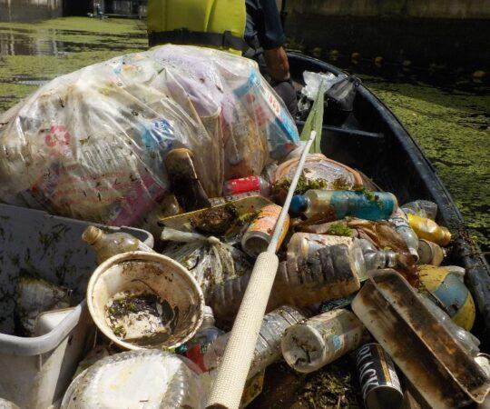 江戸川河川事務所中川出張所と連携 初の綾瀬川放水路ゴミ拾い
