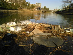久しぶり大きなゴミ集団を回収