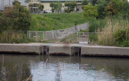 国土交通省関東地方整備局 江戸川河川事務所訪問